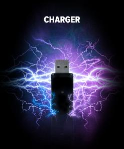 Hookah pen charger